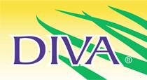 Divatropical s.a de c.v.